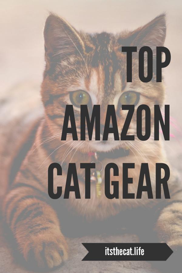top amazon cat gear