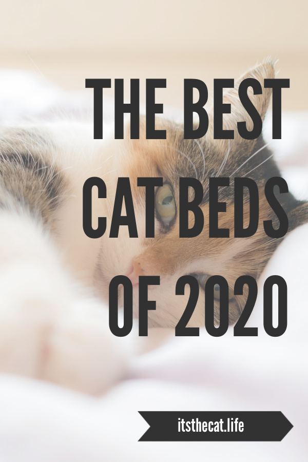 best cat beds of 2020