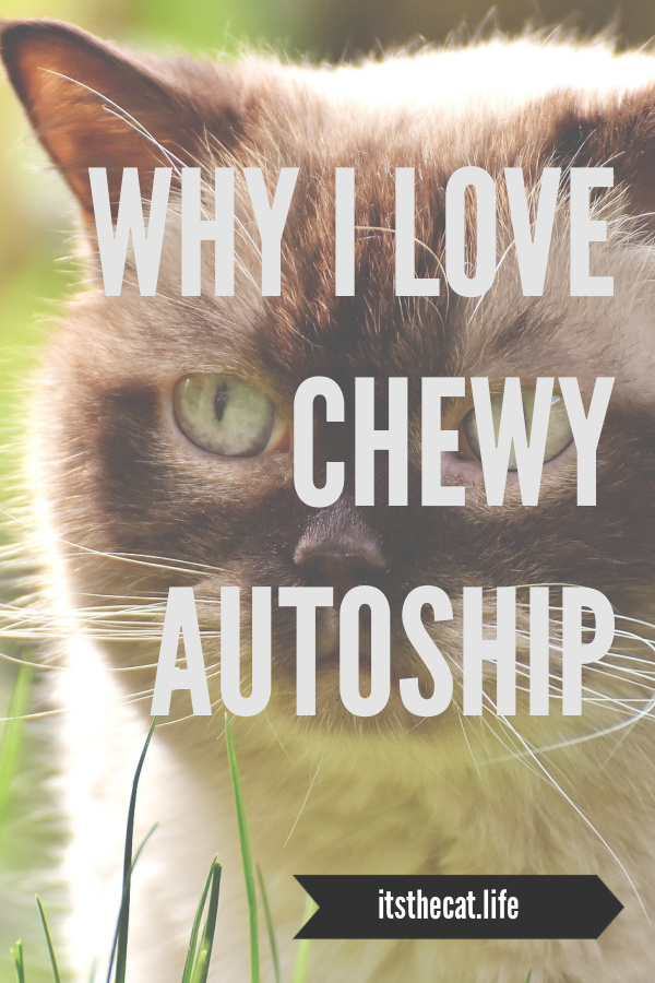 why I love chewy autoship