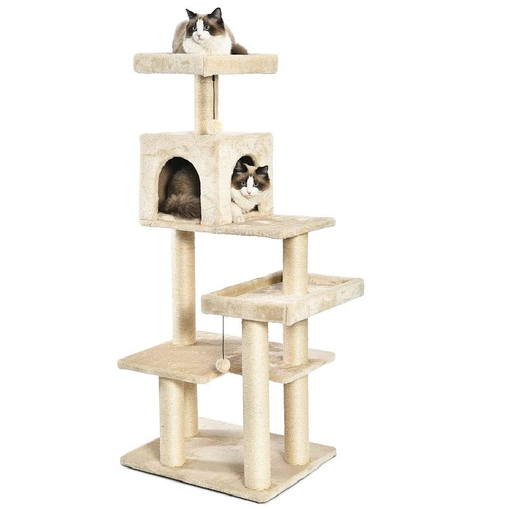 Top Cat Trees of 2021