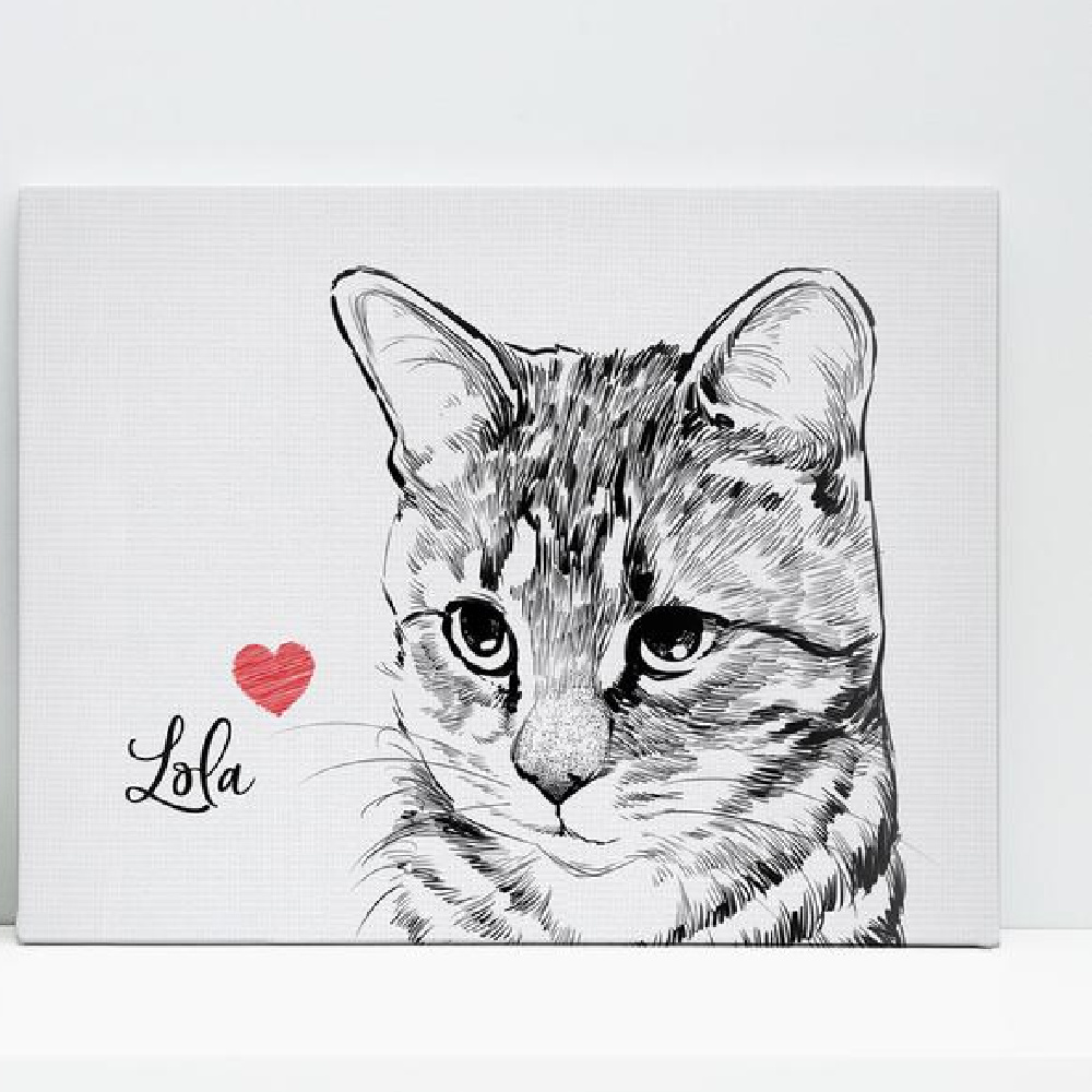 25 Great Gifts for The Cat Lover
