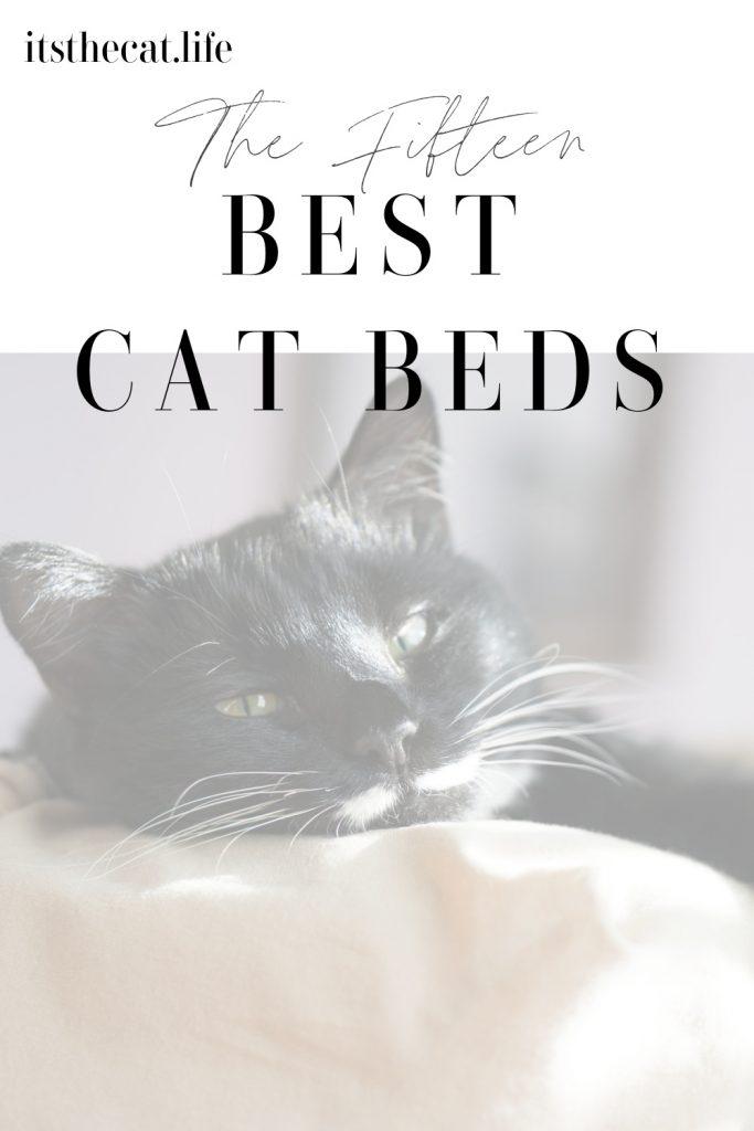 The Fifteen Best Cat Beds